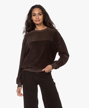 Closed Ribbed Velvet Jersey Sweatshirt - Dark Lava