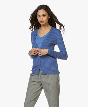 Belluna Citron V-Neck Rib Cardigan - Blue