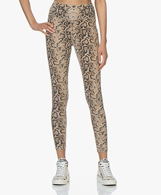Ragdoll LA Python Print Leggings - Brown