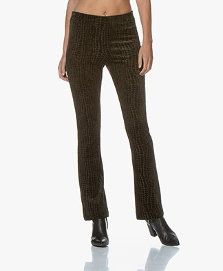 no man's land Croco Velvet Flared Pants - Extra Dark Moss