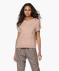 Sibin/Linnebjerg Aspen Merino-Alpaca Short Sleeve Sweater - Nude