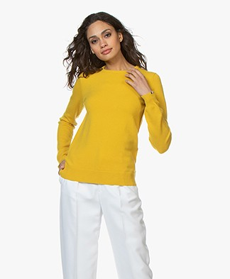 extreme cashmere N°41 Body Basic Cashmere Trui - Sunflower