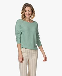indi & cold Seamless Cotton Sweater - Basilico