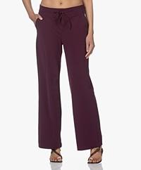 JapanTKY Myza Straight Travel Jersey Pants - Burgundy