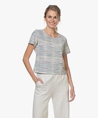 Josephine & Co Benito Tweed T-shirt - Print Sky Blue