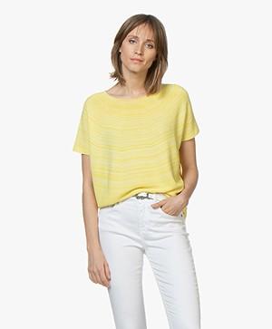 Drykorn Samela Rib Short Sleeve Pullover - Yellow