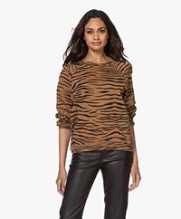 Ragdoll LA Distressed Zebra Print Sweatshirt - Bruin