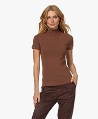 Josephine & Co Trees Short Sleeve Turtleneck Sweater - Brown