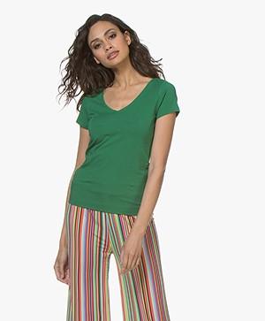 Josephine & Co Charl Katoenen T-shirt - Groen