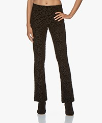 no man's land Jersey Pants with Velvet Pattern - Zwart