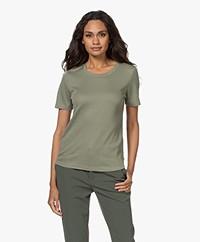 Repeat Rib Jersey T-shirt - Sage