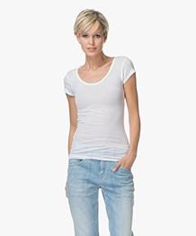 American Vintage T-shirt Massachusetts - Wit