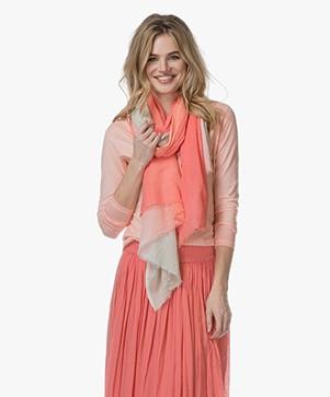 Josephine & Co Leroy Gradiënt Sjaal - Indian Pink