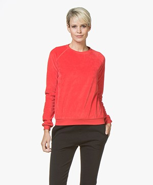 BY-BAR Teddy Velvet Sweater - Bright Red