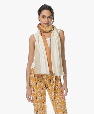 Josephine & Co Leroy Gradient Scarf - Coffee