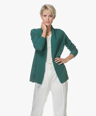 Belluna Martino Cardigan with Shawl Collar - Verde