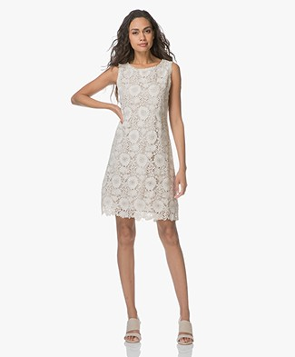 no man's land Lace A-line Dress - Chalk