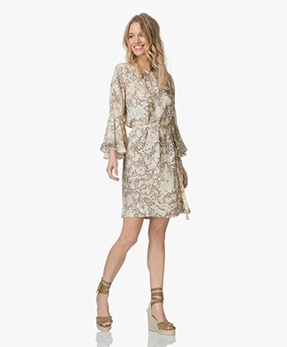 Project AJ117 Adrianna Silk Blend Print Dress - Beige/Moss