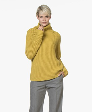 Drykorn Arwen Rib Knit Turtleneck Sweater - Yellow