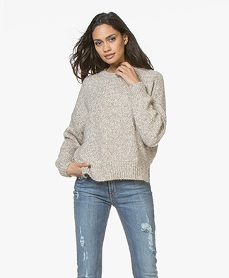 Vanessa Bruno Wool and Cotton Jaimie Sweater - Beige Melange