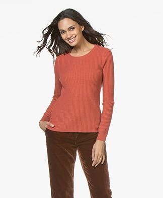 Repeat Cashmere Rib Round Neck Pullover - Rust