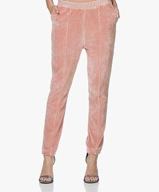 American Vintage Isacboy Fluwelen Sweatpants - Treat