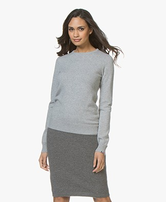 extreme cashmere N°41 Body Basic Cashmere Trui - Grijs