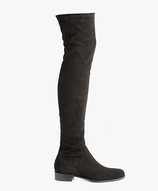 Panara Suede Over the Knee Boots - Black