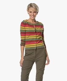Kyra & Ko Nola Short Striped Cardigan - Army Green