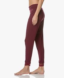 Calvin Klein Pajama Pants in Modal Jersey - Brazen