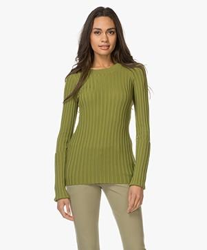 Joseph Merino Rib Knit Sweater - Pea