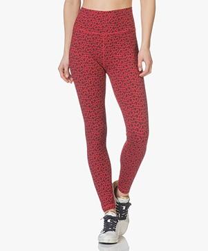 Ragdoll LA Luipaard Print Legging - Rood Luipaard