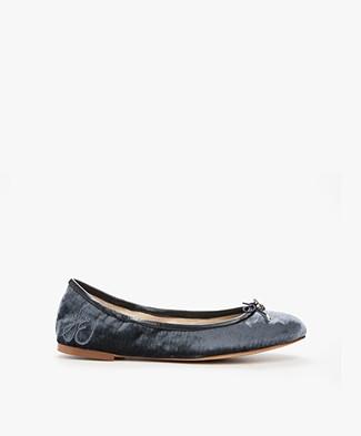 Sam Edelman Felicia Ballet Flats in Velvet - Indigo