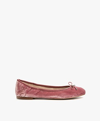 Sam Edelman Felicia Ballet Flats in Velvet - Faded Rose