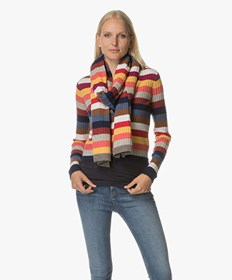 Josephine & Co Alisa Rib Knitted Scarf - Multi-colours