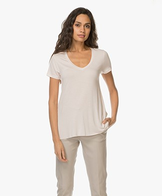 Majestic V-neck T-shirt in Washed Viscose - Petale