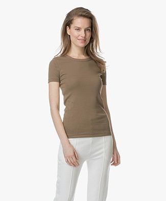 Petit Bateau R-neck T-Shirt in Cotton - Shitake