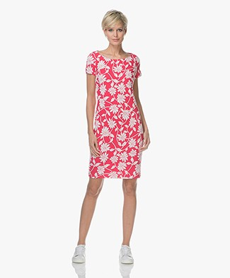 Josephine & Co Lizanne Jersey Dress - Print Magenta