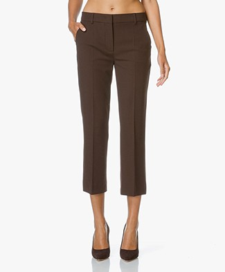 Sportmax Opice Cropped Pants - Brown