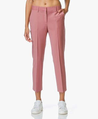 Theory Treeca Cropped Pantalon