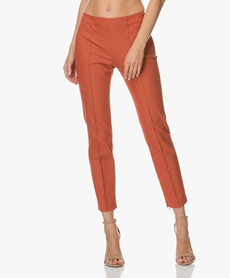 Theory Alettah Cropped Pants - Dark Marmalade