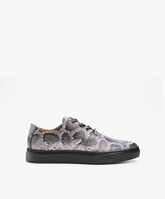 Fred de la Bretonière Faux Python Leather Sneakers - Grey/Black