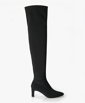 Panara Over The Knee Stretch Boots with Mid Heel - Black