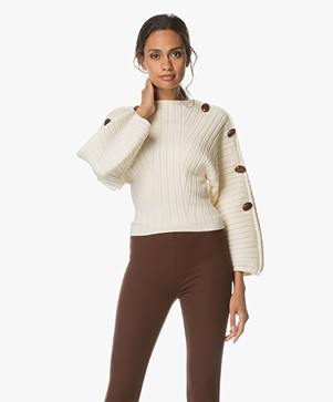 Sportmax Nice Pebble-Embellished Fan Sweater - Avorio Unito