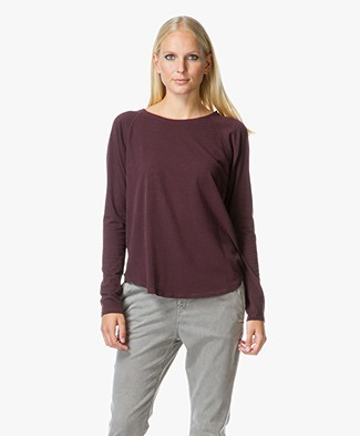 Majestic Raglan Sleeved Shirt with Round Neck